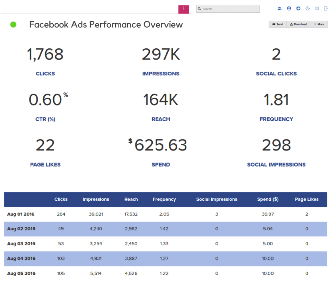 Screenshot of Facebook Ads Performance Overview